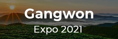 Gangwon Expo 2021