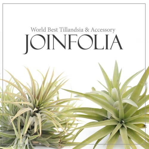 Joinflower Co., Ltd.