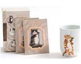 Hibiscus black tea : Cat