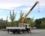 Truck Mounted Crane (HGC976M)