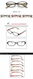 Fashion Optical Frame Eywear TR90