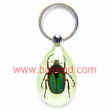 man made insect amber keychains,key ring,so cool gift,very unique gift,bayead