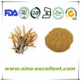 top quality Cordyceps Cephalosporium Mycelia