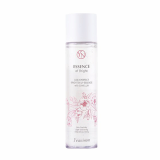 YEANIMM Daily Perfect Brighten Up Essence with Camellia
