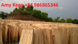Eucalyptus Core Veneer thickness 1_7mm A grade