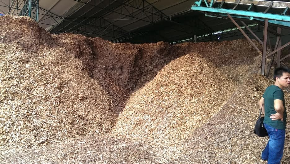 Wood Chips from Vietnam For Power Plant For Japan/Korea