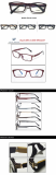 Fashion Optical Frame Eyewear Frame TR90