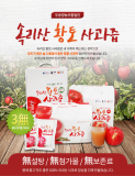 Songnisan Apple juice 50
