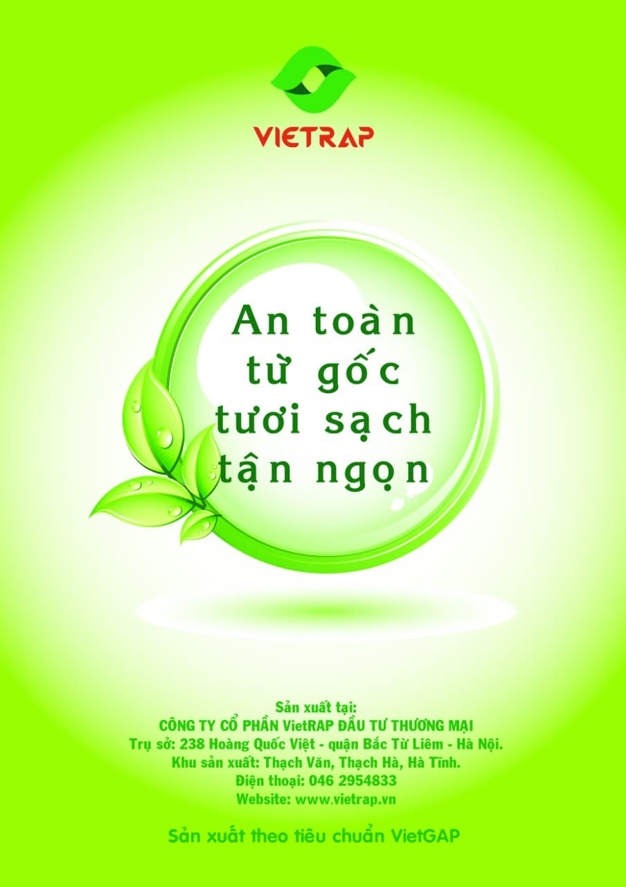 VIETRAP INVESTMENT__ JSC