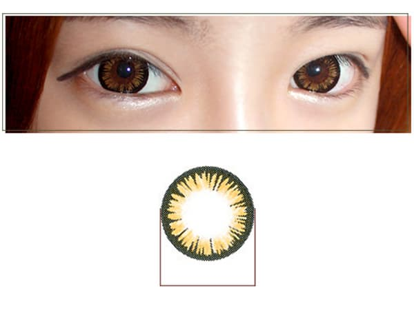 AURORA Contact Lenses