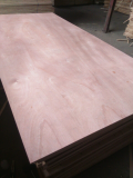 Sell_ Commercial plywood for interior use glue MR Okoume