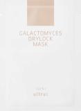 Ultru _ Galactomyces Drylock Mask 25ml
