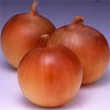 Carrot/Onion > Wattsu No.2