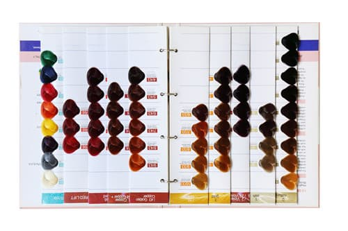 Hair Color Chart For SalonHair Color Swatch BookHair Dye From