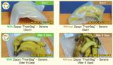 bag-test2.jpg
