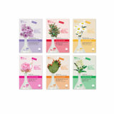 MJCARE-BSC (BOTANIC STEM CELL) mask pack