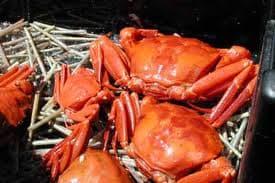 Live Red king crab for sale $5/kg | tradekorea