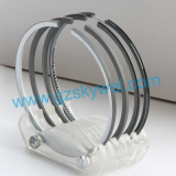 Piston Ring for Engineering