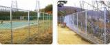 Perimeter Fence