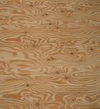 Larch Plywood Panels