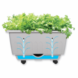 Self_Watering Planter for easy gardening