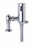 Automatic flush valve
