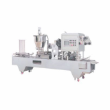 Automatic container packing machine