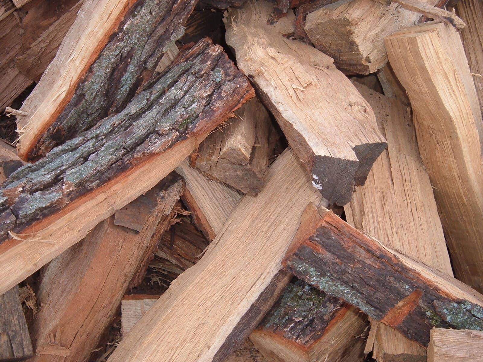 Oak Wood Firewood | tradekorea