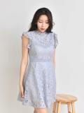 Dresses_ Lace Dresses_ Mini Dresses_ Spring Dresses