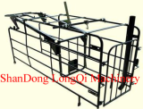 Pig automatic Gestation stall