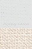 Inkjet Canvas for Solvent Based inks/Matte Finished/320gsm
