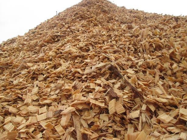 WOODCHIPS BREACKBULK FOR PULP AND PAPERS