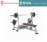 Luxury Gym Body Building Equipment Weight Lifting Bench