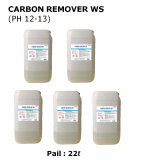 CARBON REMOVER WS