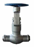 High pressure_pressure sealed globe valve