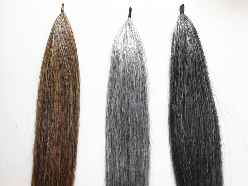 Horse Tail Extensions For Equestrian From Herdsman Horse Tail Hair