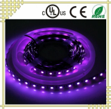 UV LED Strip with Wave Length from 395nm to 400nm