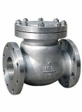 Cast steel flanged_threaded swing check valve