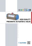 Pneumatic Actuator - Double Acting