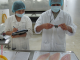 Fish - Seafood Specialist - OFCO Inspection - Sourcing