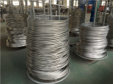 AISI 304 Stainless Steel Wire Rod