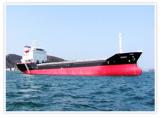 Bulk Carrier 6.5K