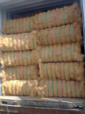 High quality coconut fiber -Vietnam origin-