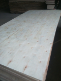 Sell_ Acacia plywood 4x8 local wood 100_ from Vietnam