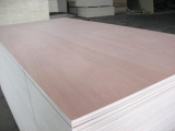 Sell_ Bintangor plywood with packing grade