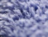 closeup-1.jpg