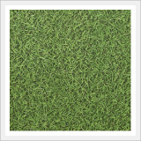 PVC Tile - Green Grass