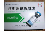 HCG 5000IU  High Purity HGH Best Price