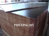 Tego plywood glue WBP Melamine 10_ core 100_ hardwood