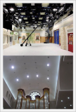 Scherff Acoustic Plaster Ceiling and Wall -ncSpray